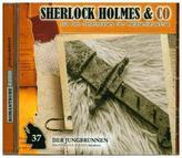 Sherlock Holmes & Co - Der Jungbrunnen. Tl.2, 1 Audio-CD