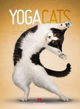 Yoga Cats 2019