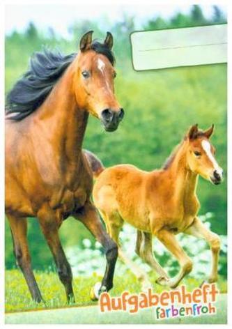 Lernfreunde Aufgabenheft Farbenfroh Mini A6 1 Schuljahr Motiv Pferd EH, Zusatz sortenrein