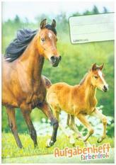 Lernfreunde Aufgabenheft Farbenfroh A5 1 Schuljahr Motiv Pferde EH, Zusatz sortenrein