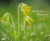 Poesie der Pflanzen 2019
