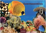 Unterwasserwelten 2019