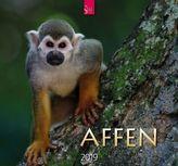 Affen 2019