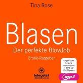 Blasen - Der perfekte Blowjob Erotischer Hörbuch Ratgeber, 1 Audio-CD, MP3 Format