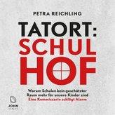 Tatort Schulhof: Warum Schulen kein geschützter Raum mehr für unsere Kinder sind - Eine Kommissarin schlägt Alarm, 1 Audio-CD
