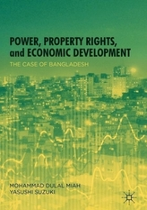 Power, Property Rights, and Economic Development