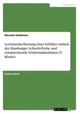 Lernstandserfassung eines Schülers mittels der Hamburger Schreib-Probe und entsprechende Fördermaßnahmen (5. Klasse)