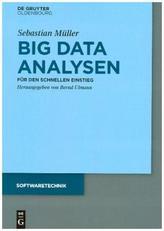 Big Data Analysen