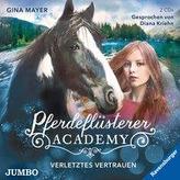 Pferdeflüsterer-Academy 4. Verletztes Vertrauen