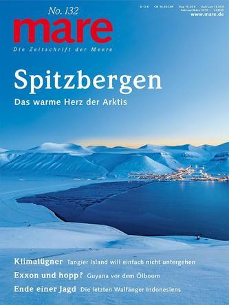 mare No. 132. Spitzbergen